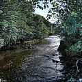 Almond River Cramond by Jose Luis Cezon Garcia