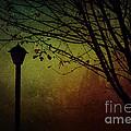 Almost Dark by Billie-Jo Miller