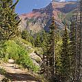 Along St. Mary's Lake Trail by Marty Koch