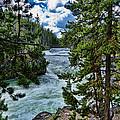 Along The River by Jon Berghoff