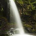 Alongside Grotto Falls by Andrew Soundarajan