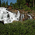 Alpine Falls Lake Tahoe II by LeeAnn McLaneGoetz McLaneGoetzStudioLLCcom