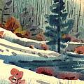 Alpine Meadow by Donald Maier