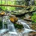 Alum Cave Bluff Trail by Debra and Dave Vanderlaan