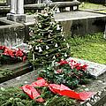 Always Home For Christmas by Lorraine Devon Wilke