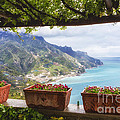Amalfi Coast Vista From Under A Trellis by George Oze