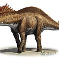 Amargasaurus Cazaui, A Prehistoric Era by Sergey Krasovskiy