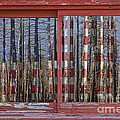 America Still Beautiful Red Picture Window Frame Photo Art View by James BO  Insogna