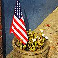American Flag In Flower Pot - 3 by Larry Mulvehill