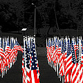 American Flags by Papote Detres