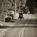 Amish Buggy - Lancaster County Pa by Bill Cannon