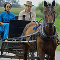 Amish Buggy Ride by Dennis Pintoski