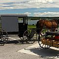 Amish Buggy by Sally Weigand