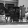 Amish Transportation by Eric Tressler