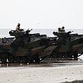 Amphibious Assault Vehicles Land Ashore by Stocktrek Images