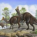 Amurosaurus Riabinini Dinosaurs Grazing by Sergey Krasovskiy