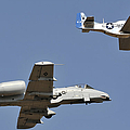 An A-10 Thunderbolt And A P-51 Mustang by Stocktrek Images