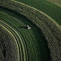 An Aerial View Of A Tractor On Curved by Paul Chesley