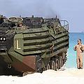 An Amphibious Assault Vehicle Is Guided by Stocktrek Images