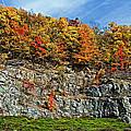 An Autumn Day by Steve Harrington