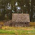 An Idaho Barn by Jeff Swan
