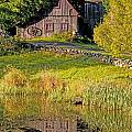 An Old Barn Reflected In The Pond Water by David Chapman