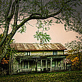 An Old Home Place by Randall Branham