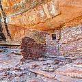 Anasazi Indian Ruin - Cedar Mesa by Gary Whitton