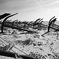 Anchor Beach 7 by Jez C Self