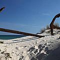 Anchor Beach 8 by Jez C Self
