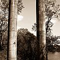 Ancient Columns By The River by Douglas Barnett