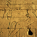 Ancient Egyptian Carving, Ramesseum Temple, Luxor by Hisham Ibrahim