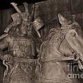 Ancient Warrior by Bonnie Myszka