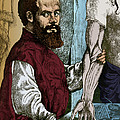 Andreas Vesalius, Flemish Anatomist by Science Source