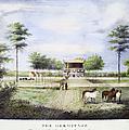 Andrew Jackson: Hermitage by Granger