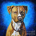 American Staffordshire Terrier Dog Painting by Michelle Wrighton