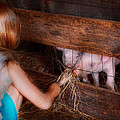Animal - Pig - Feeding Piglets  by Mike Savad