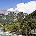 Animas River Colorado by Tim Mulina