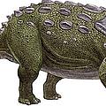 Ankylosaurus Magniventris by Sergey Krasovskiy