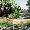 Annapolis Fountain Garden by Brian Wallace