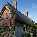 Anne Hathaway's Cottage by Andrew  Michael