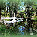 Another White Bridge In Magnolia Gardens Charleston Sc II by Susanne Van Hulst