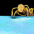 Ant On Pressure Sensor, Sem by Volker Steger