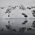 Antarctic Mountains Reflected by Mathieu Meur