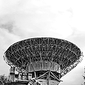 Antenna   by Olivier Le Queinec