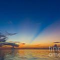 Anticrepuscular Rays by Jen TenBarge