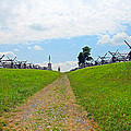 Antietam Battle Of Bloody Lane by Cindy Manero