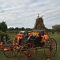 Antique Buggy In Fall Colors by Kathy Clark