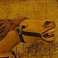 Antique Carousel Appaloosa Horse by David Dehner