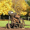 Antique Farm Equipment by Brittany Roth